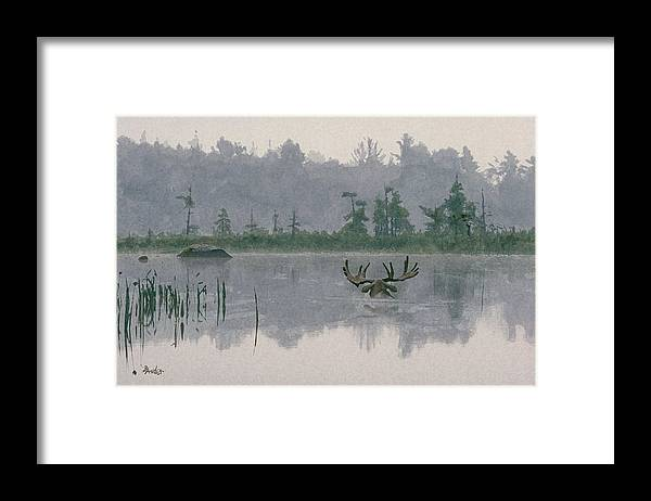 Moose Framed Print featuring the painting Moose Crossing by Brent Ander