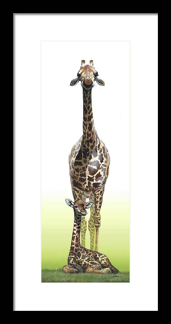 Giraffes Framed Print featuring the painting Mothers Watch is keeping by Harold Shull