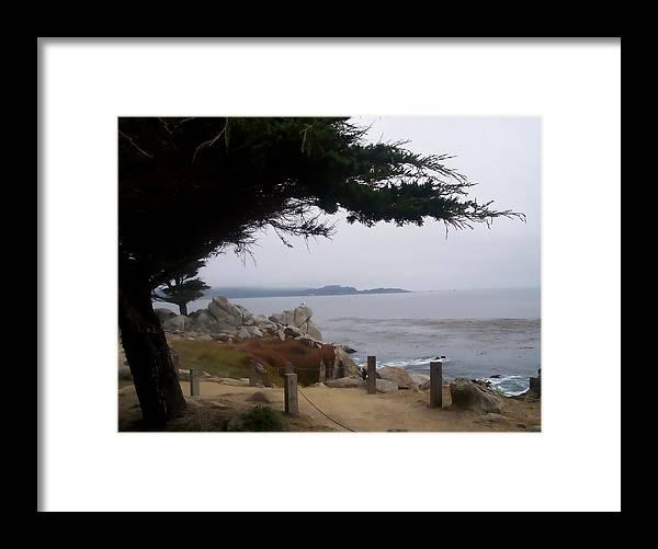Beach Framed Print featuring the photograph Near Carmel by Pharris Art