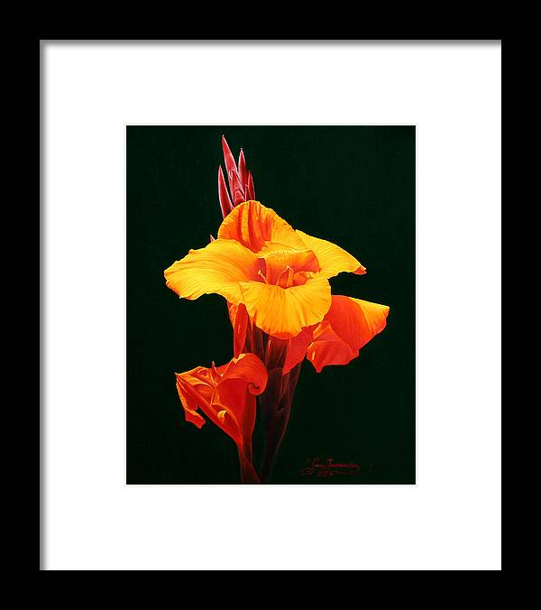 Floral Framed Print featuring the painting Orange Canna by Gary Hernandez