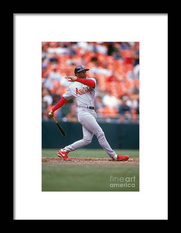 St. Louis Cardinals Framed Print featuring the photograph Ozzie Smith by Don Smith