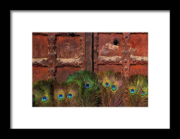 Minimalism Framed Print featuring the photograph Peacock Feathers by Prakash Ghai