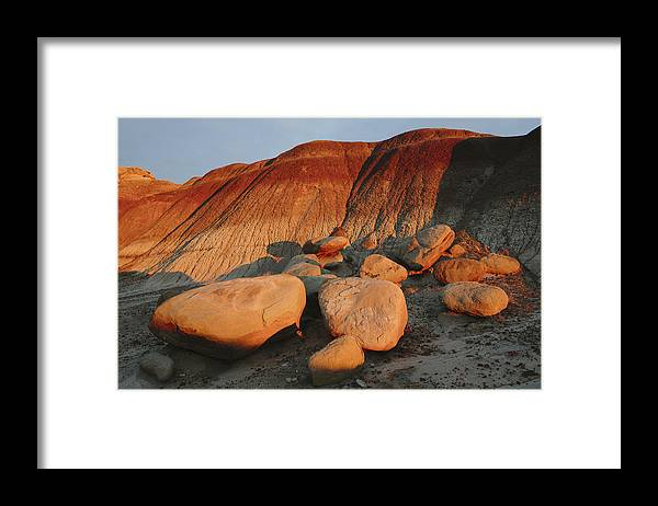 Scenics Framed Print featuring the photograph Petrified Forest at dusk by Mint Images