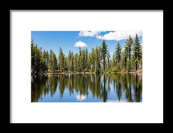 Trees Framed Print featuring the photograph Reflections by John Heywood