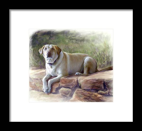 Dog Framed Print featuring the painting Restrained Energy- Yellow Labrador Retriever Portrait by Connie Moses