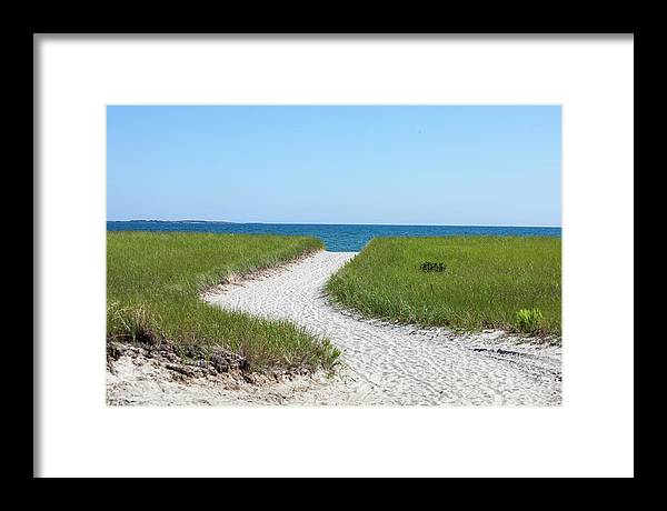 Path Framed Print featuring the photograph Sandy Path To The Ocean by Trevor Slauenwhite