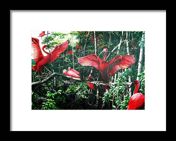 Caribbean Painting Scarlet Ibis Painting Bird Painting Coming Home To Roost Painting The Caroni Swamp In Trinidad And Tobago Greeting Card Painting Painting Tropical Painting Framed Print featuring the painting Scarlet Ibis by Karin Dawn Kelshall- Best