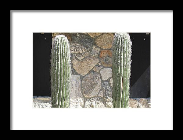 Photograph Framed Print featuring the photograph Side By Side by Richard Wetterauer