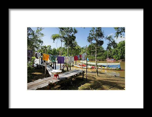 Amazon Rainforest Framed Print featuring the photograph Simple Life in Amazon,Brazil by Paulo Amorim