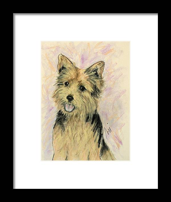 Dog Framed Print featuring the drawing Soulmate by Cori Solomon