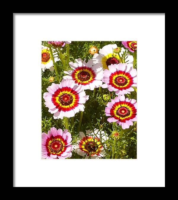 Wildflower Framed Print featuring the painting Spring Wildflowers by Amy Vangsgard