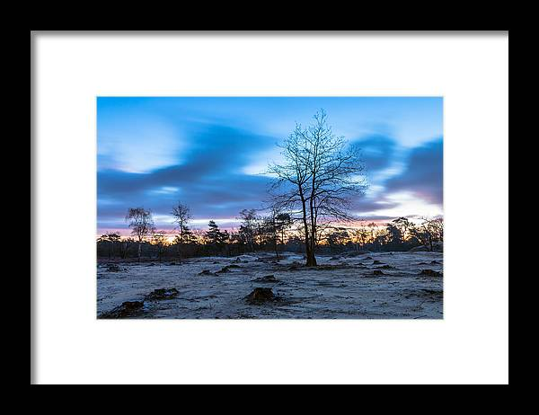 Scenics Framed Print featuring the photograph Standing Strong by William Mevissen