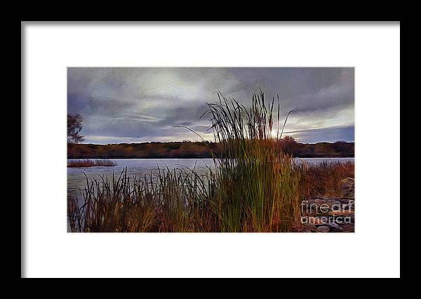 Landscape Framed Print featuring the photograph Tall Grass At Sunset by Cedric Hampton