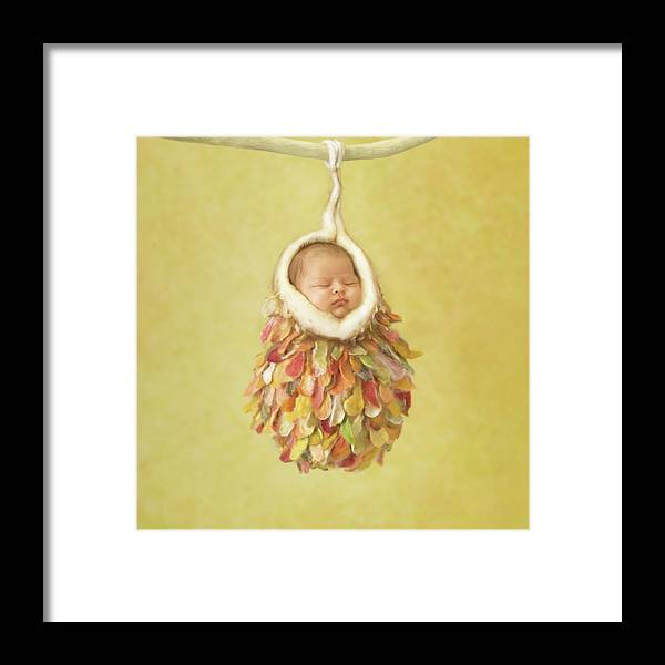 Tiny Cocoon by Anne Geddes