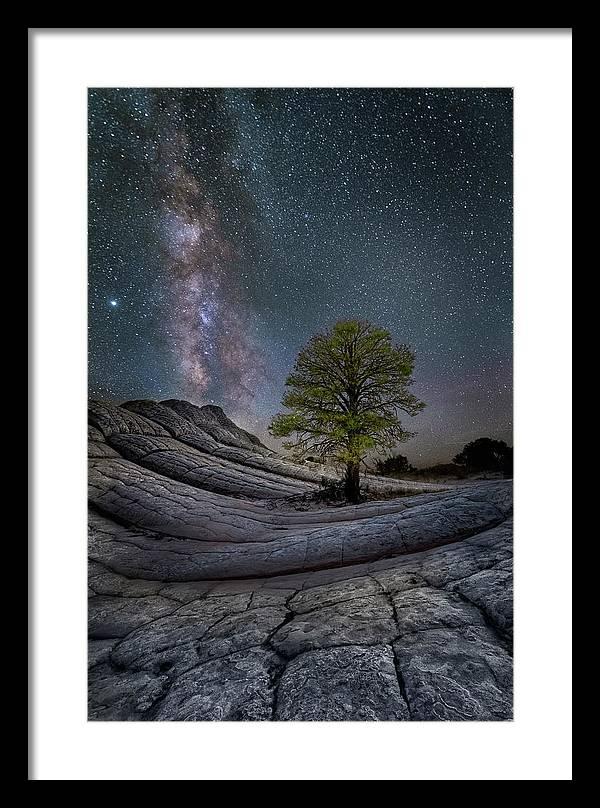 White Pocket Milky Way Tree by Michael Ash