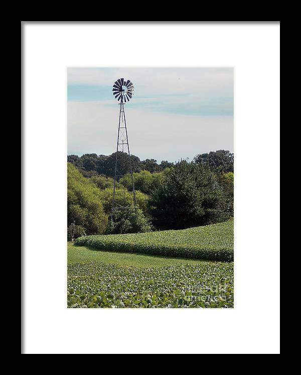 Culture Framed Print featuring the photograph Wind by Skip Willits