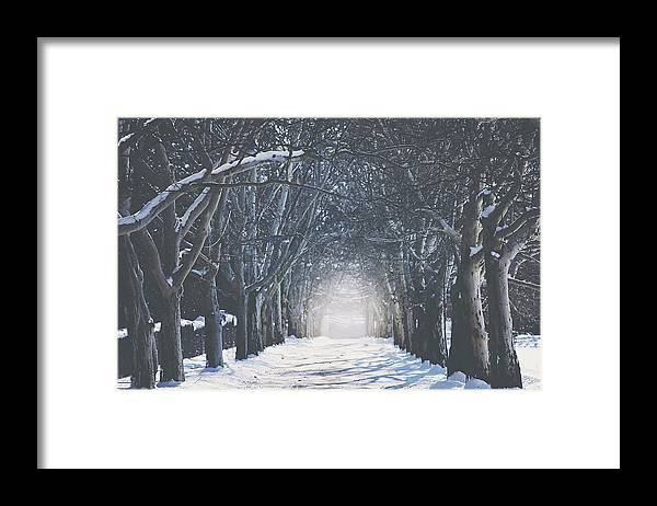 Scenic Framed Print featuring the photograph Winter Road by Carrie Ann Grippo-Pike