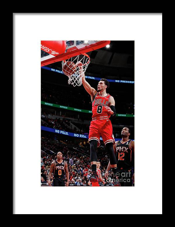 Chicago Bulls Framed Print featuring the photograph Zach Lavine by Jeff Haynes