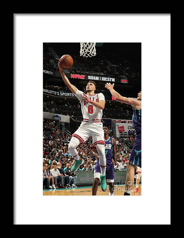 Chicago Bulls Framed Print featuring the photograph Zach Lavine by Kent Smith