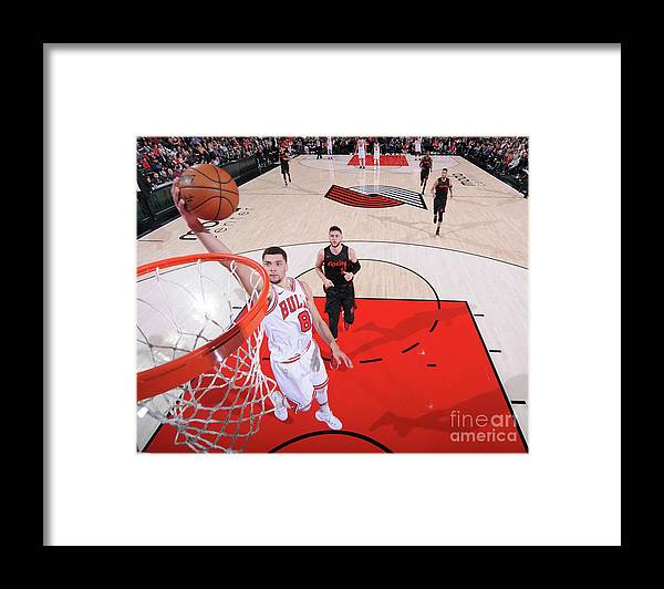 Chicago Bulls Framed Print featuring the photograph Zach Lavine by Sam Forencich