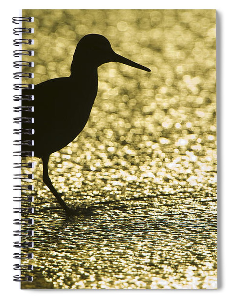 Nature Spiral Notebook featuring the photograph Bird Silhouette by John Shaw