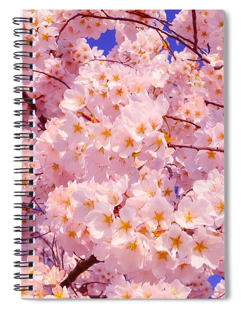 2012 Centennial Celebration Spiral Notebook featuring the photograph Bursting With Blossoms by Jeff at JSJ Photography