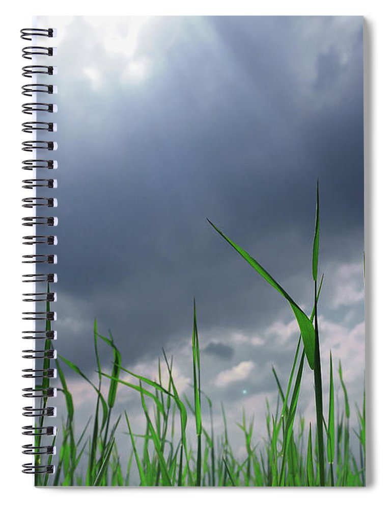 Thunderstorm Spiral Notebook featuring the photograph Corn Plant With Thunderstorm Clouds by Silvia Otte