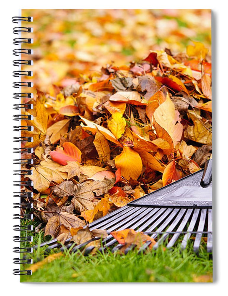 Rake Spiral Notebook featuring the photograph Fall Leaves With Rake by Elena Elisseeva