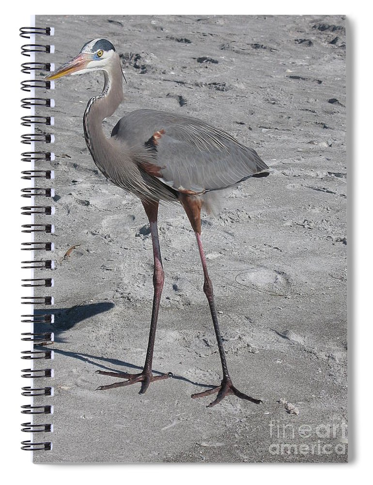 Heron Spiral Notebook featuring the photograph Great Blue Heron On The Beach by Christiane Schulze Art And Photography
