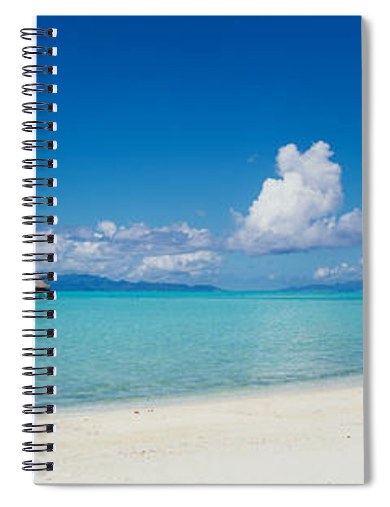 Photography Spiral Notebook featuring the photograph Palm Tree On The Beach, Moana Beach by Panoramic Images