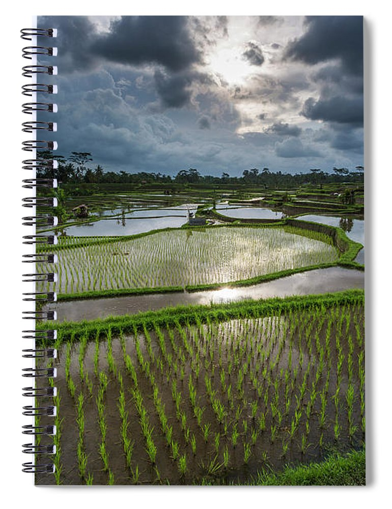 Tranquility Spiral Notebook featuring the photograph Rice Terraces In Central Bali Indonesia by Gavriel Jecan