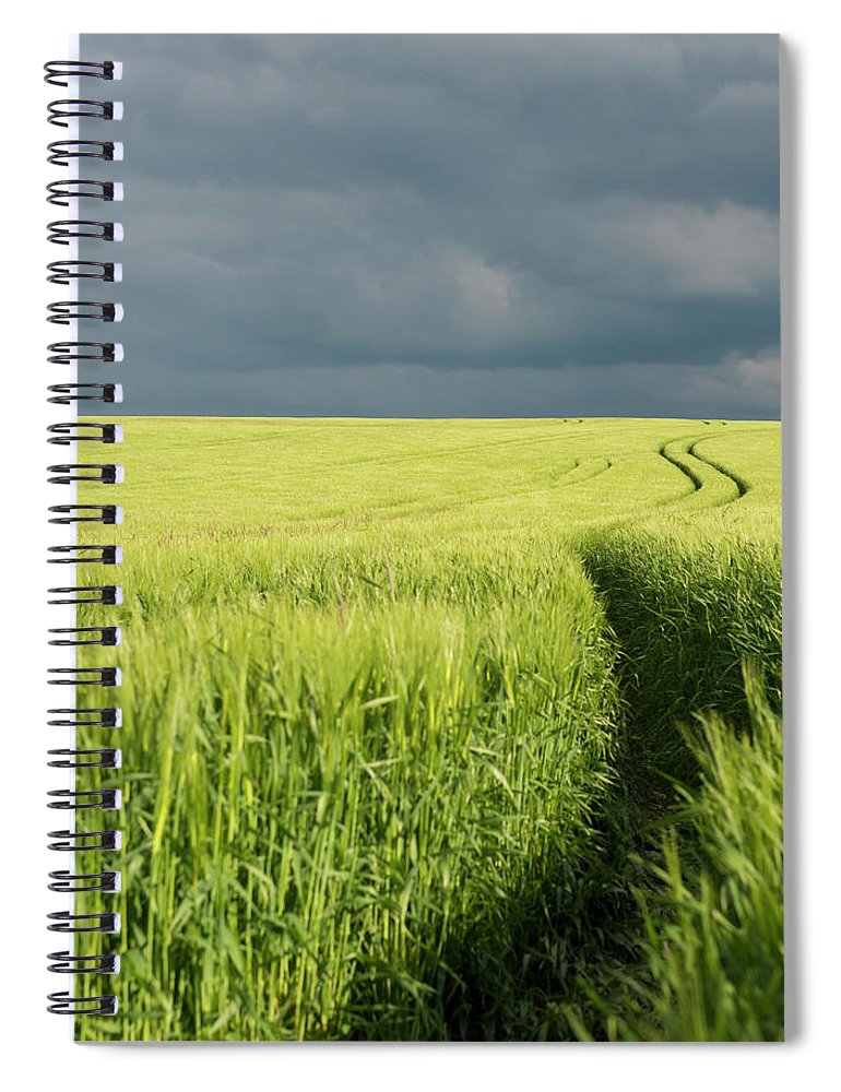 Tranquility Spiral Notebook featuring the photograph Tire Tracks In Grain Field by Thomas Winz
