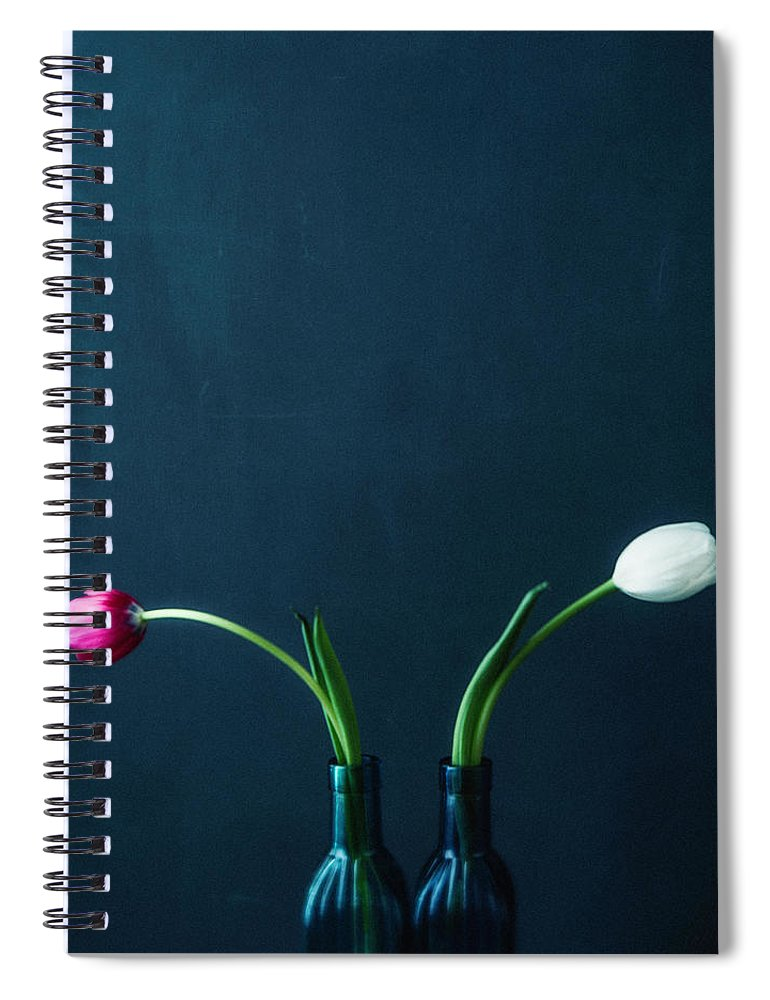 Mother's Day Spiral Notebook featuring the photograph Tulip Still Life For Mothers Day by Catlane