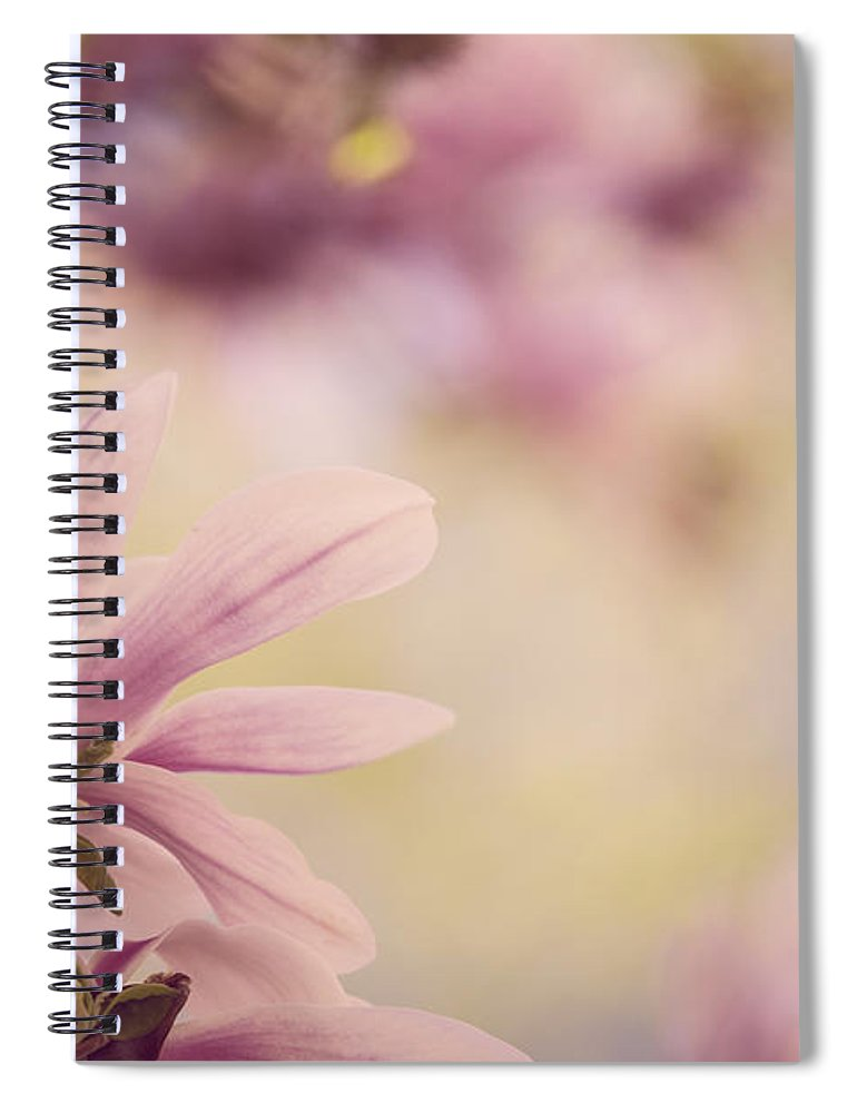 Magnolia Spiral Notebook featuring the photograph Magnolia Flowers by Nailia Schwarz