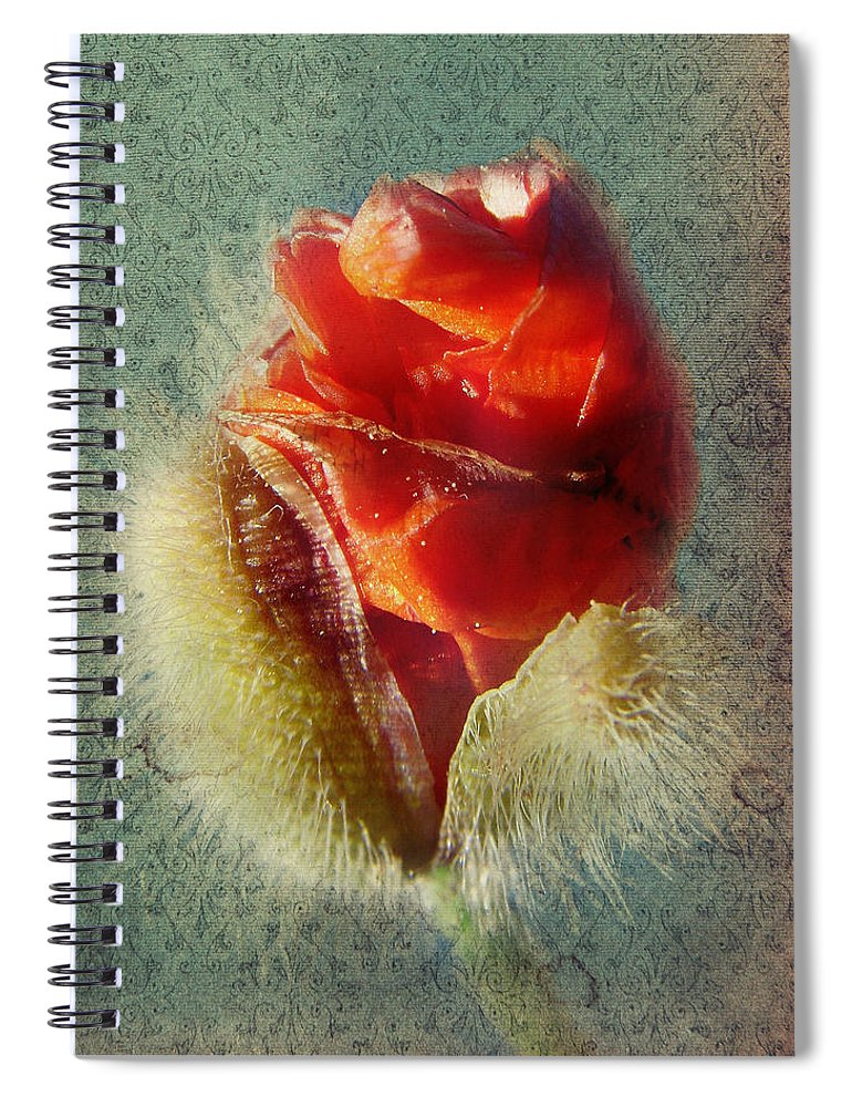 Colorful Flowers Spiral Notebook featuring the photograph Poppy by Heike Hultsch