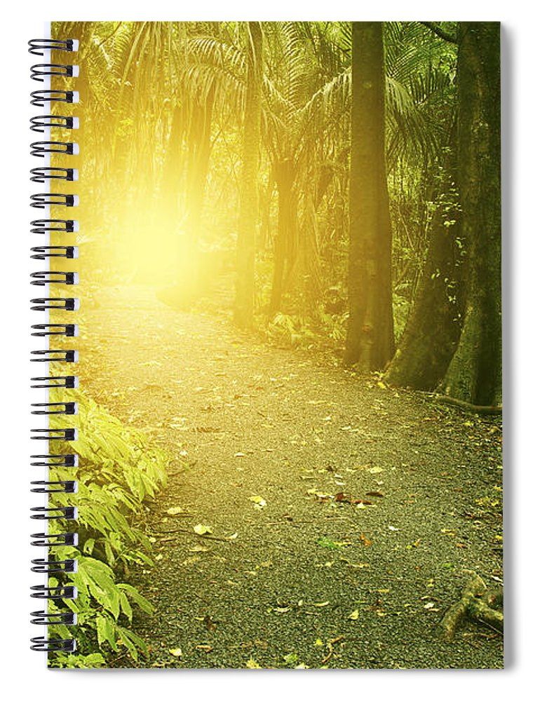Jungle Spiral Notebook featuring the photograph Jungle Light by Les Cunliffe