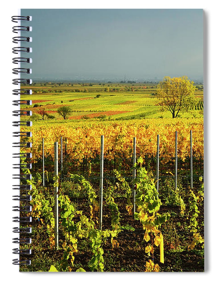 Scenics Spiral Notebook featuring the photograph Vineyard Landscape by Jochen Schlenker