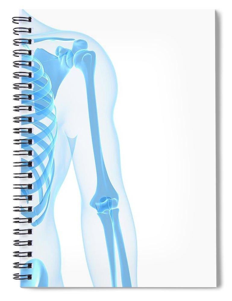 White Background Spiral Notebook featuring the digital art Upper Body Bones, Artwork by Sciepro
