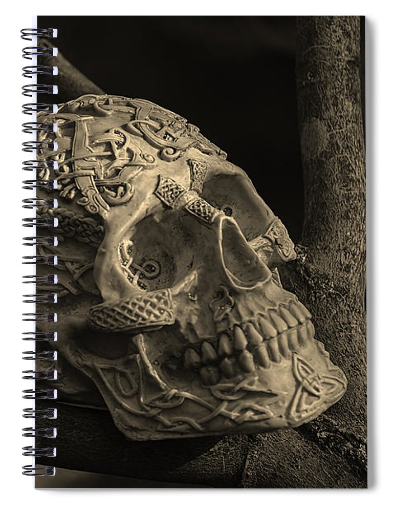 Usa Spiral Notebook featuring the photograph Celtic Skulls Symbolic Pathway To The Other World by LeeAnn McLaneGoetz McLaneGoetzStudioLLCcom
