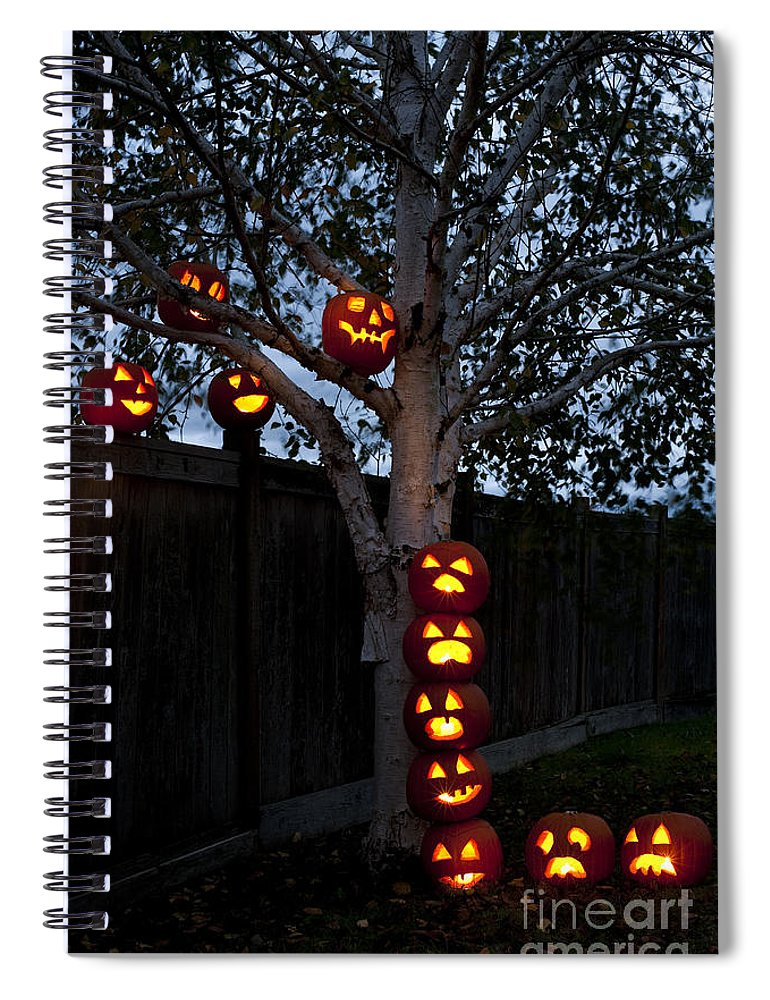 31st Spiral Notebook featuring the photograph Pumpkin Escape Over Fence by Jim Corwin