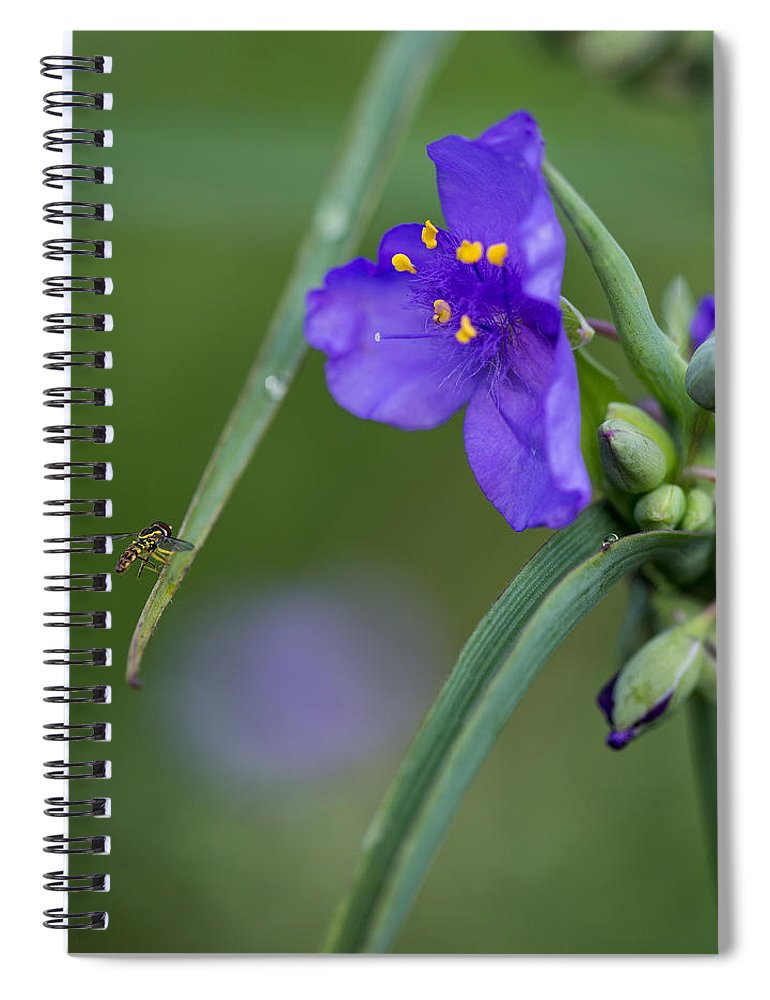 A Tiny Visitor Spiral Notebook featuring the photograph A Tiny Visitor by Dale Kincaid