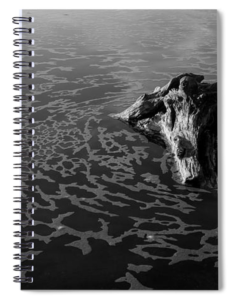 Driftwood Spiral Notebook featuring the photograph Adrift by Alex Lapidus