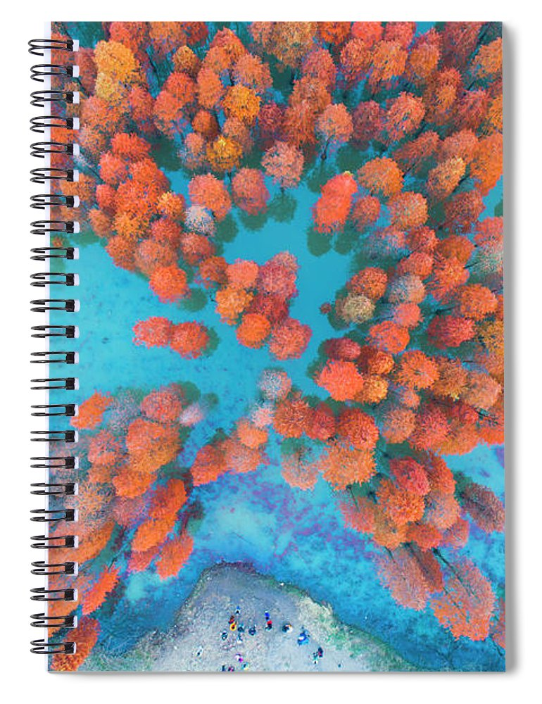 Tranquility Spiral Notebook featuring the photograph Aerial Drone View With Fir Tree Fall by Yaorusheng