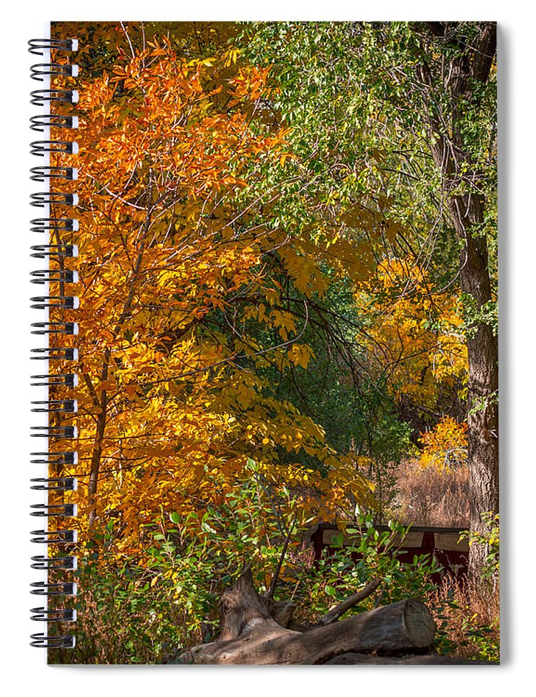 Tree Spiral Notebook featuring the photograph Along The Trail by Ernie Echols