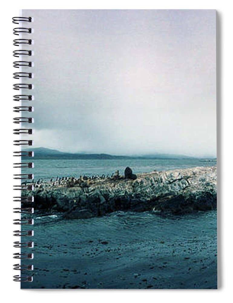 Photography Spiral Notebook featuring the photograph Arctic Birds And Sea Lions by Panoramic Images