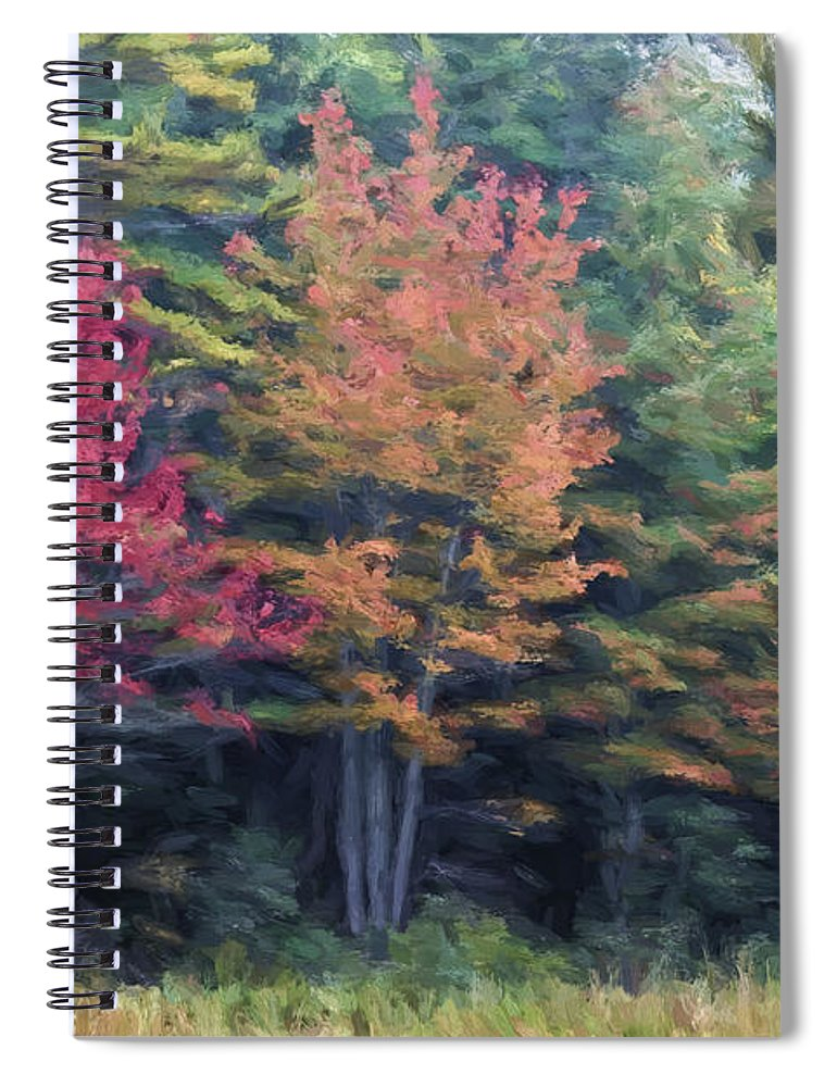 Fall Spiral Notebook featuring the photograph Autumn Color Painterly Effect by Carol Leigh