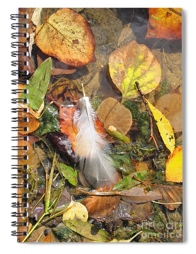 Autumn Spiral Notebook featuring the photograph Autumn Leavings by Ann Horn