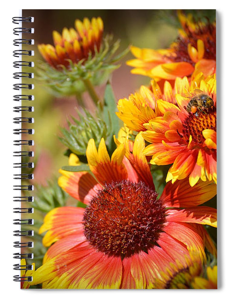 Texas Spiral Notebook featuring the photograph Beauty In The Garden by Lynn Bauer