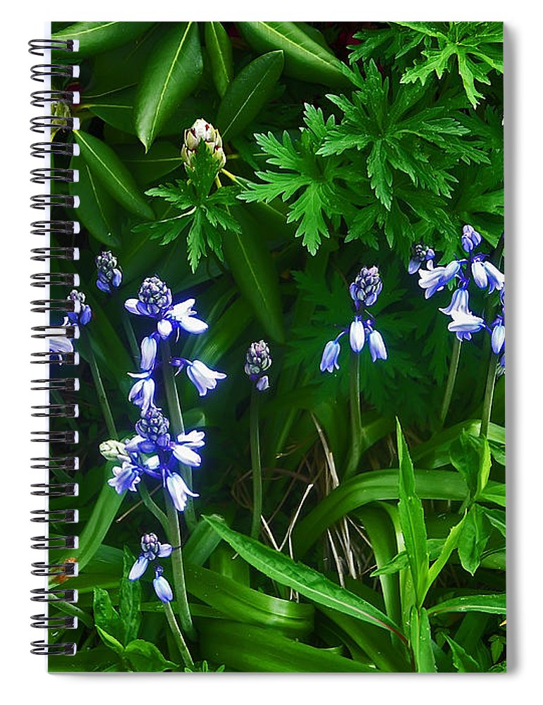 Flower Spiral Notebook featuring the photograph Blue Bells by Aimee L Maher ALM GALLERY