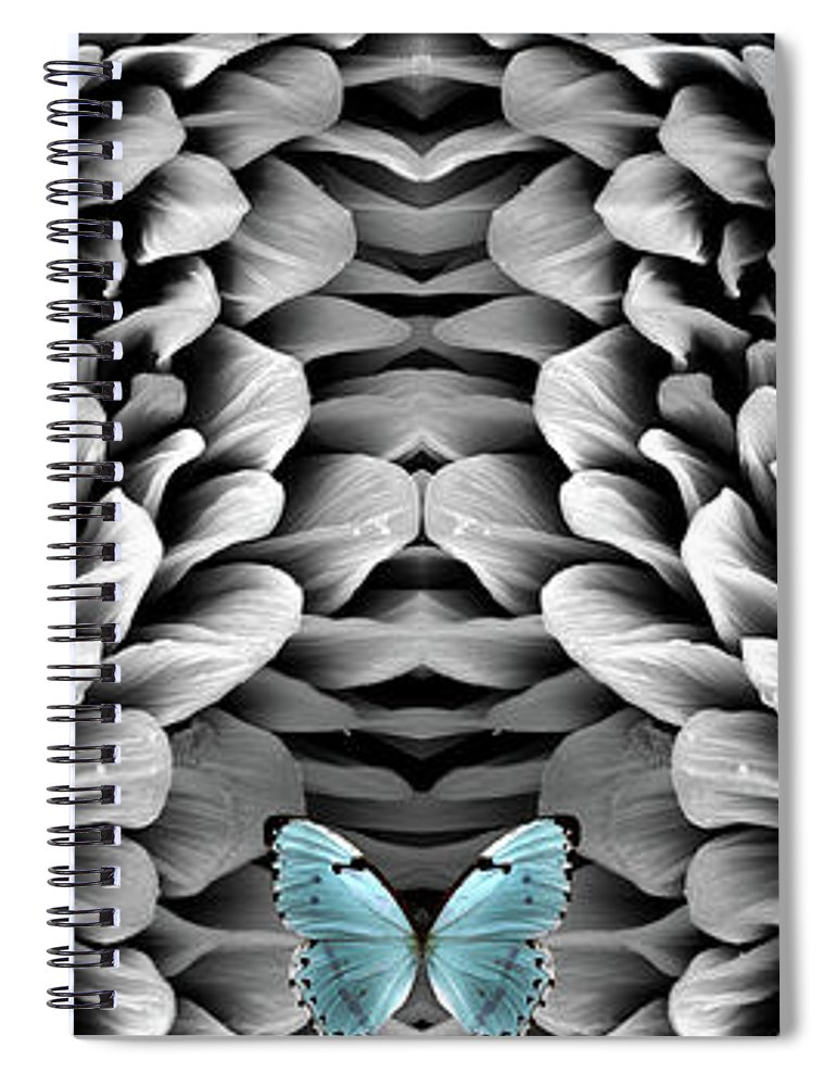 Microscope Spiral Notebook featuring the photograph Blue Butterfly And Antenna by Sheri Neva
